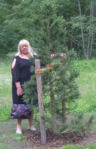 Frau Kutscher mit Mammutbaum